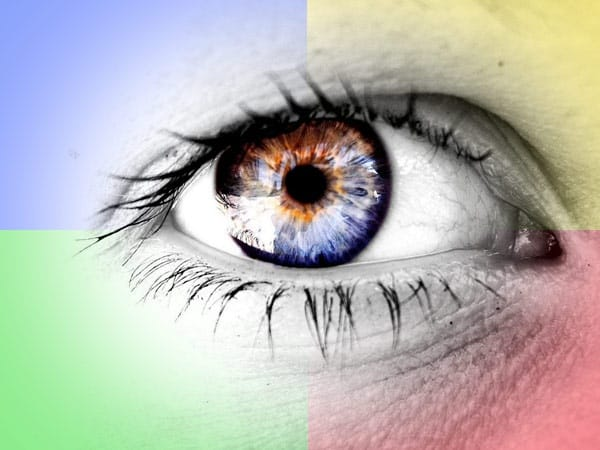 A Differently Colored Life: Understanding Color Blindness