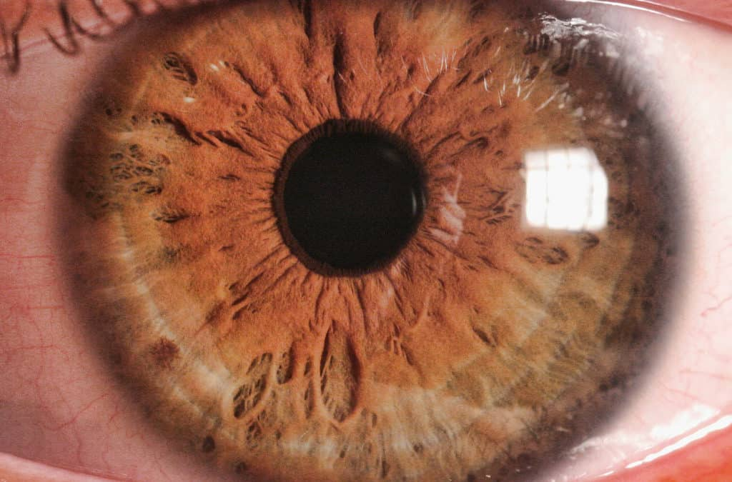 Common & Chronic Problems in the Eyes
