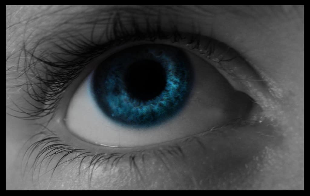 How Family History Affects Eyes