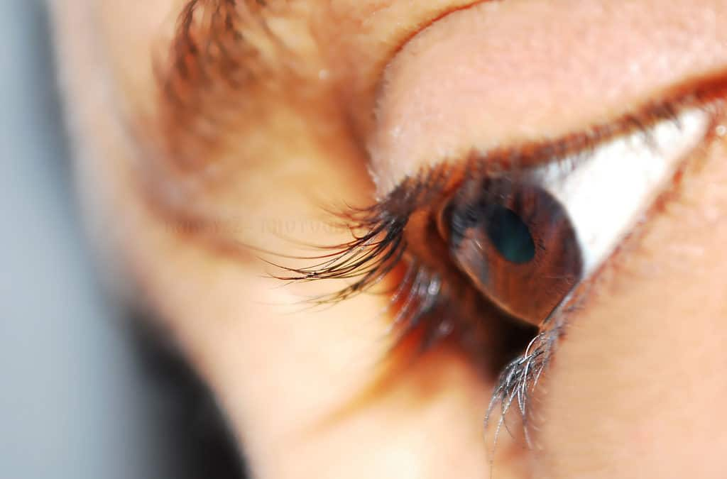10 Fun Facts You Didn't Know About Your Eyes