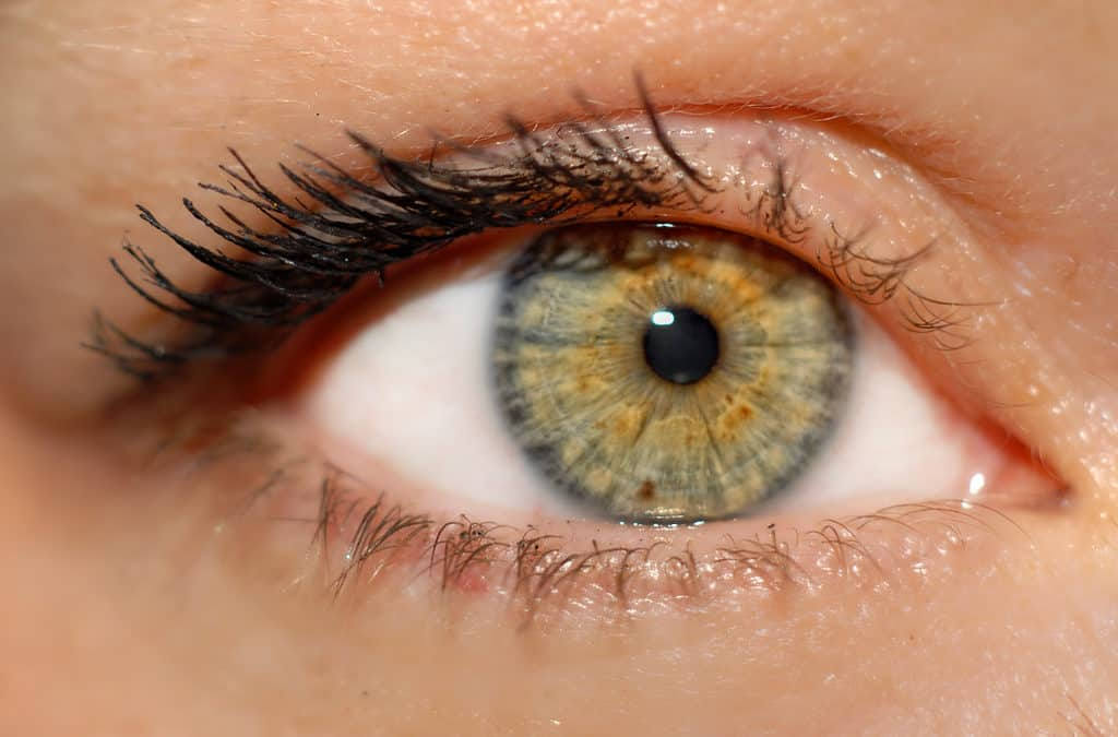 3 Ways Omega-3 Supplements Can Help Your Eyes