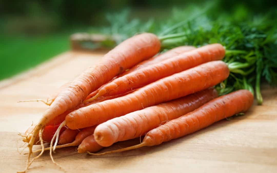 The Big Lie That Taught Us Carrots Improve Vision